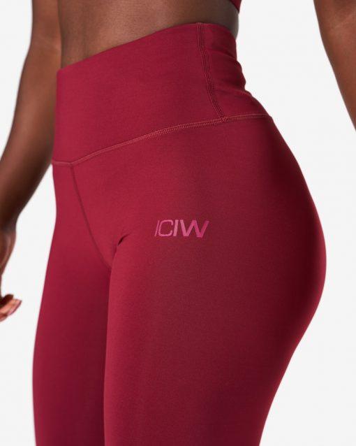 ICIW-2304_3