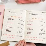 fit-is-the-sht-planner-570401_1080x